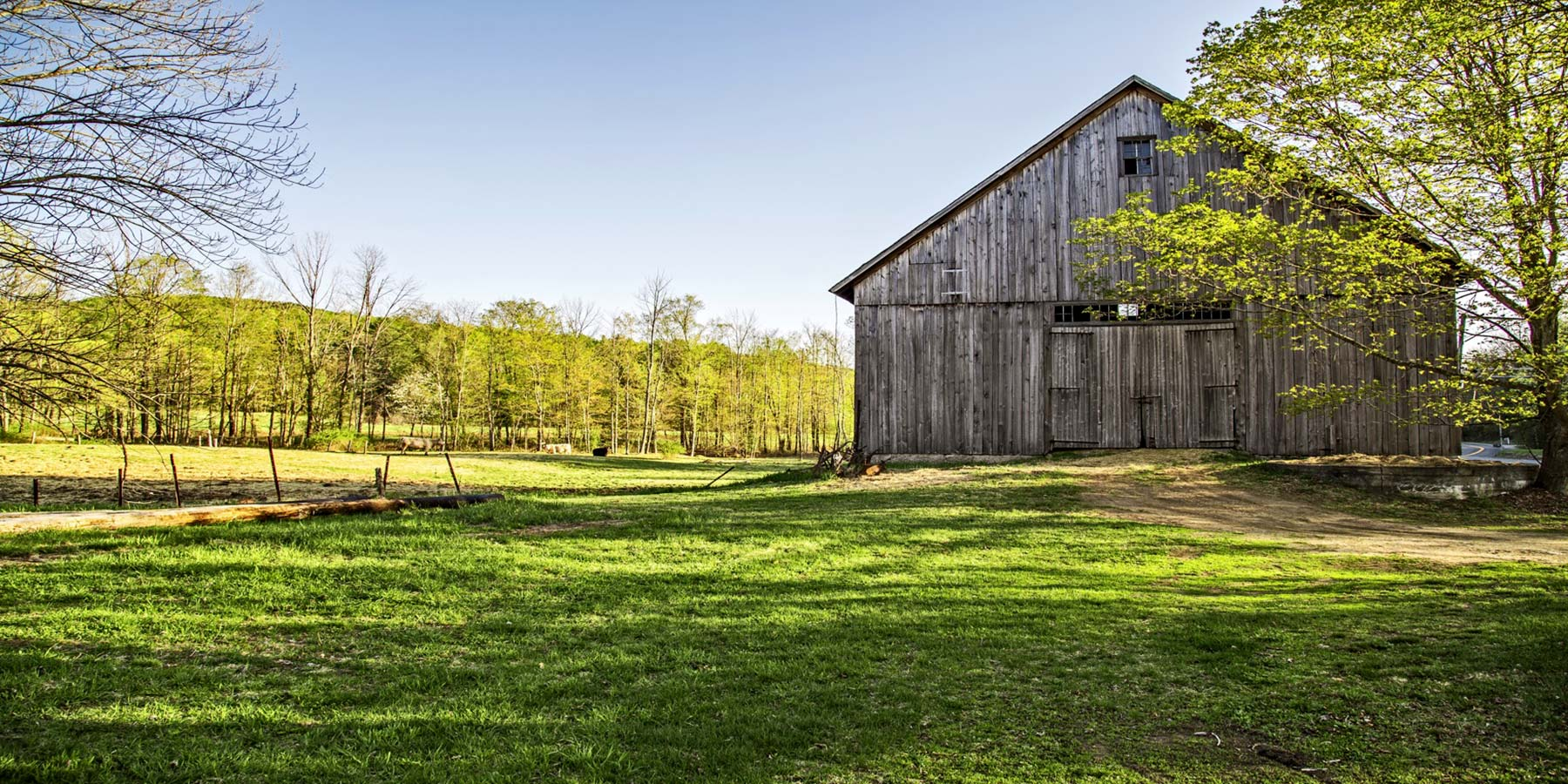 The Best College Towns In America - Art barn a romantic green house by robert young connecticut usa