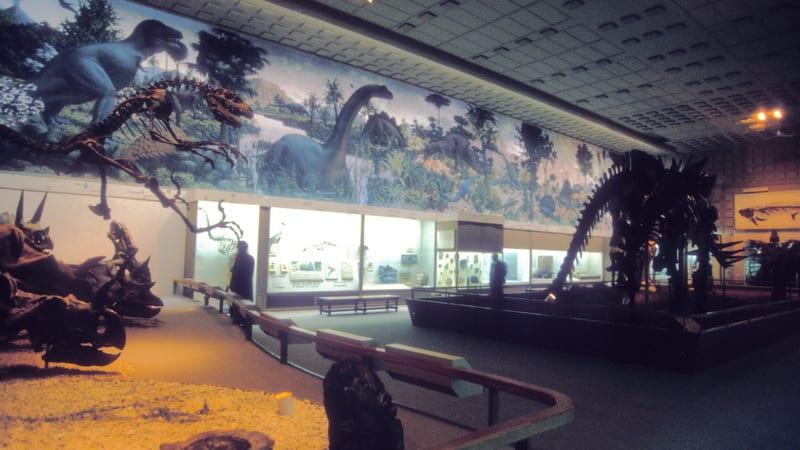 02 Yale Peabody Museum