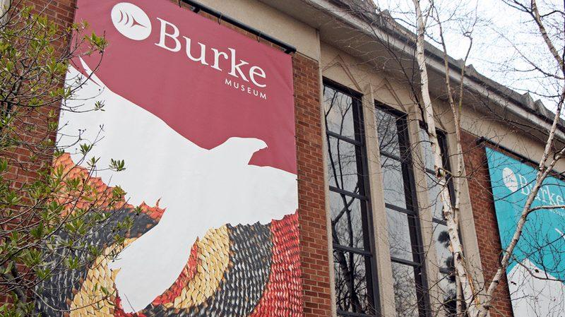 13 Burke Museum of Natural History