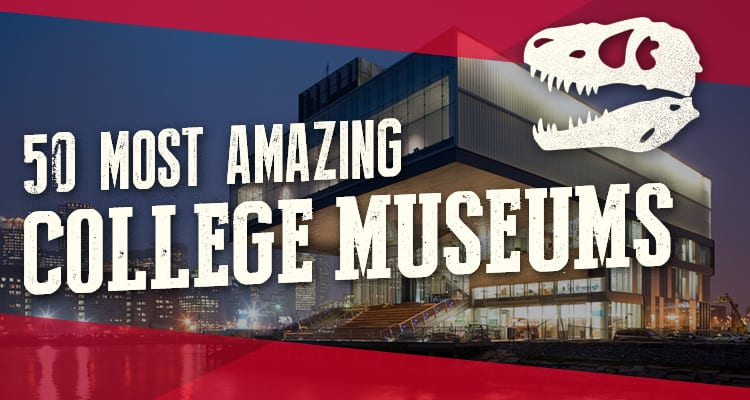Colleges in California that offer programs for museum curators?