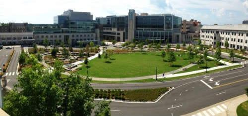duke-university-medical-center