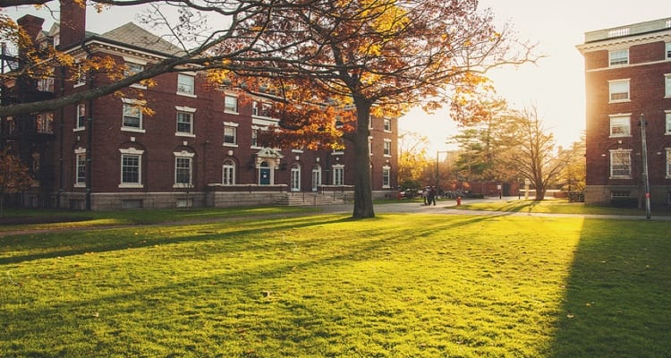 harvard-university-quad