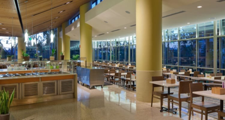 The 50 best college dining experiences college rank for U of t dining hall