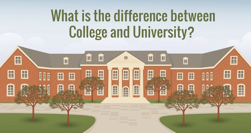 what is the difference between college and university college rank