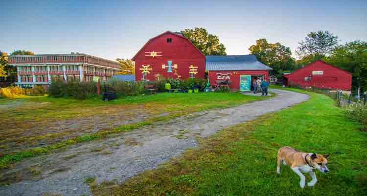 It Is A Small Scale Diversified Vegetable And Animal Farm With Historic Barn As Well