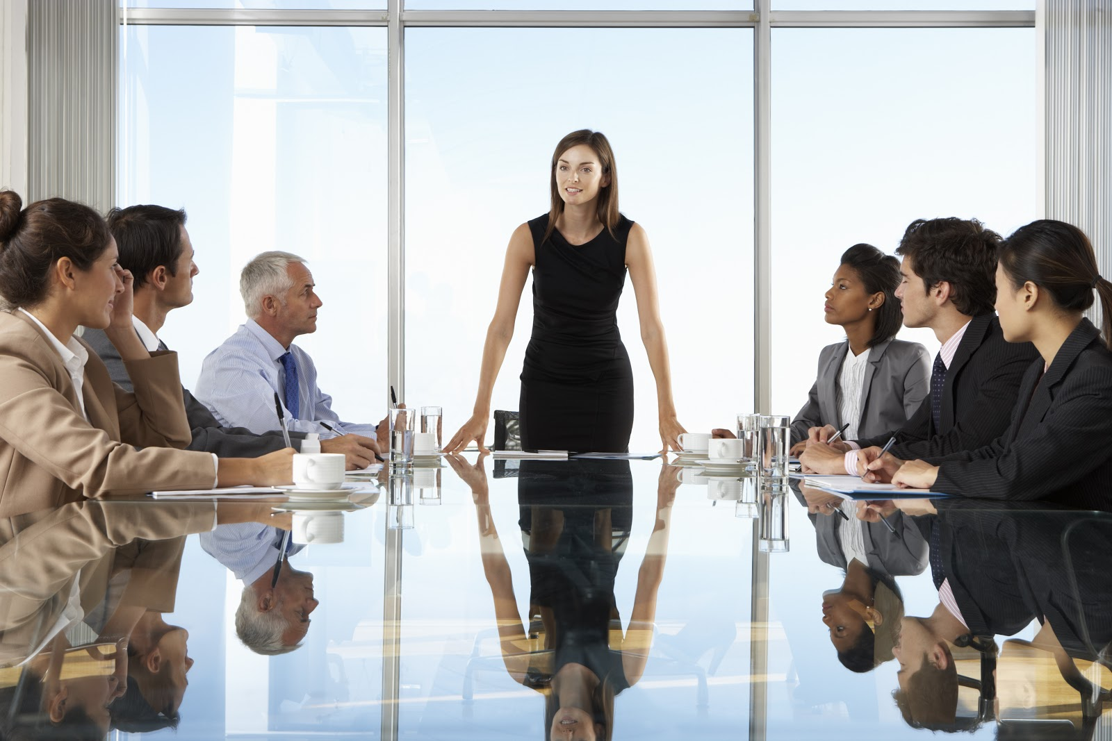 Types of business degrees: CEO leads company meeting
